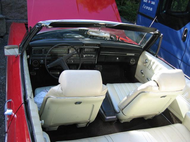 impala03.jpg